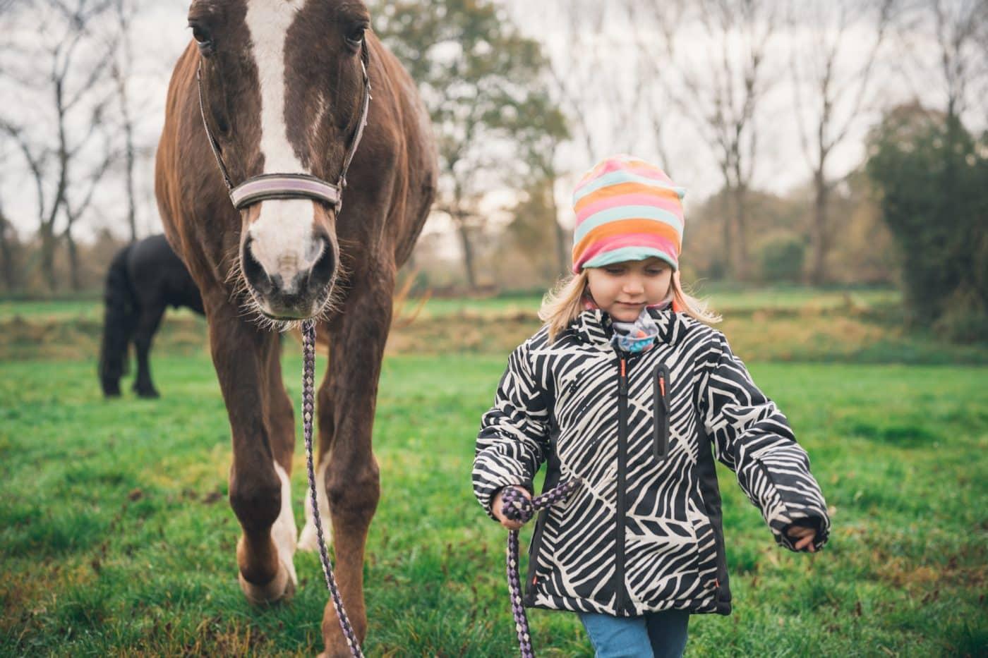 Pferdefotos als Reportage mit Kind und Familie